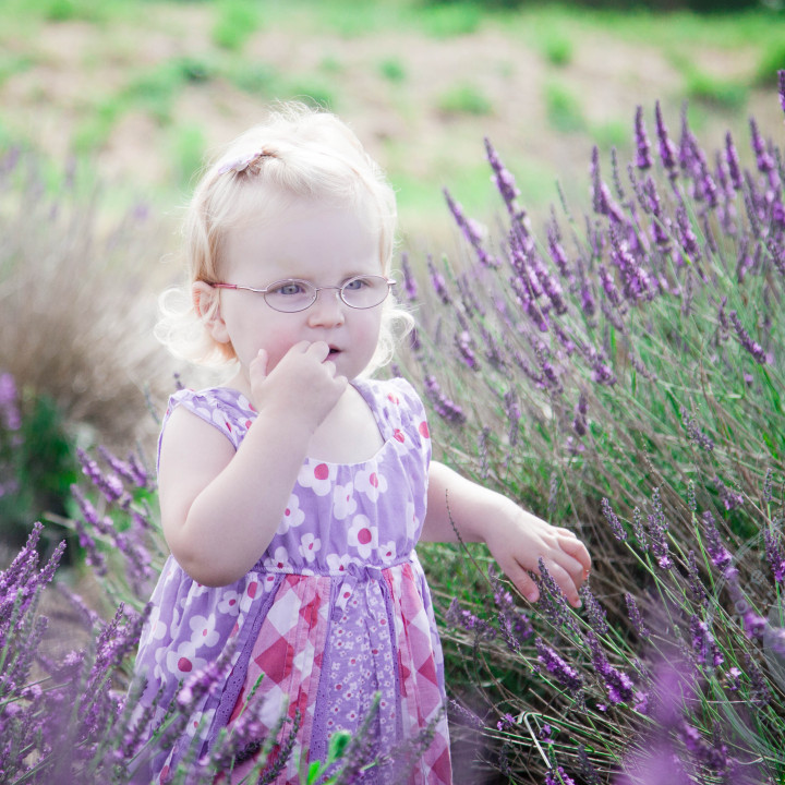 Lavender and Raspberries, Featured Portrait Session, Hampshire.